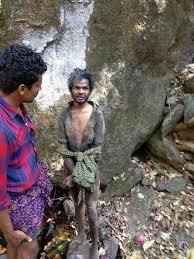 Seeking Kerala Kerala High Court Seeks To Intervene In Madhu S Murder