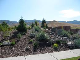 Backyard Xeriscape Ideas Backyard Xeriscape Ideas Outdoor Furniture Design And Ideas