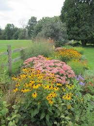 Summer Garden Plants - patricia u0027s upstate new york garden in late summer fine gardening