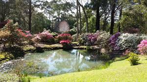 wollongong botanic gardens gardens of wollongong wollongong