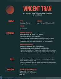 Best Resumes Examples by Resume Headline Examples 2017 Resume Examples 2017