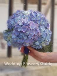 hydrangea wedding bouquet hydrangea wedding flowers