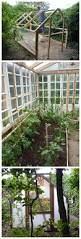Inside Greenhouse Ideas by 16 Awesome Diy Greenhouse Projects With Tutorials For Creative Juice