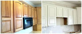 Type Of Paint For Kitchen Cabinets The Best Paint For Kitchen Cabinets U2013 Colorviewfinder Co