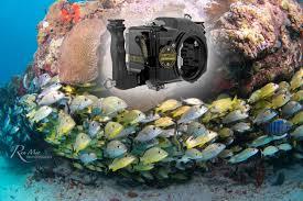 nikon d90 manual video d90 underwater housing for nikon dslr camera