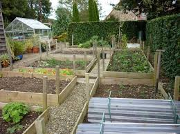 Small Backyard Vegetable Garden by 74 Best Vegetable Garden Images On Pinterest Raised Bed Gardens