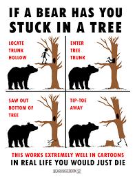 Bear Meme - the bear meme machine