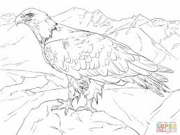 bald eagle from alaska coloring online 198163 coloring pages for
