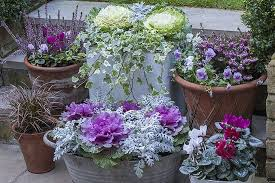 Winter Container Garden Ideas Beautiful Outdoor Winter Container Gardening Design Ideas 17