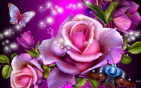 pictures of roses and butterflies 5845