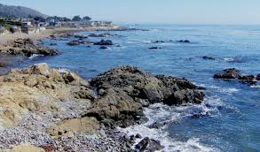 cambria ocean view homes david norwood ccre