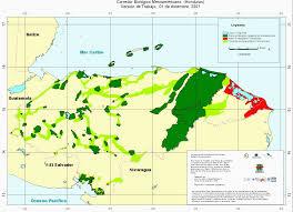 Mesoamerica Map Esse21 Lulc Module Mesoamerica Landuse Landcover Change Case