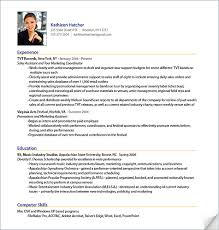 brilliant ideas professional resume format examples homey idea cv