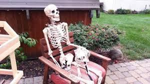 skeleton dog from grandin road youtube