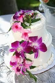 13 best cakes images on pinterest hawaiian wedding cakes cake