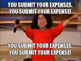 Submit Meme - you submit your expenses you submit your expense you submit your
