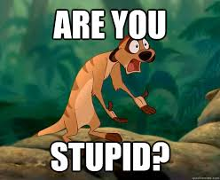 Are You Stupid Meme - are you stupid are you stupid quickmeme