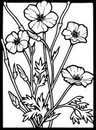 japanese garden coloring download print