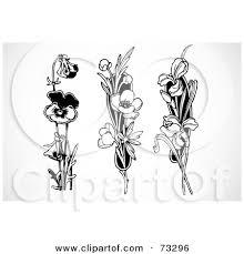 purple tulips tattoos version