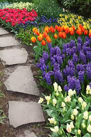 colorful flower gardens 847 best flower gardening images on pinterest beautiful flowers