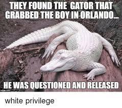 Gator Meme - they foundthe gator that grabbed the boy inorlando she was