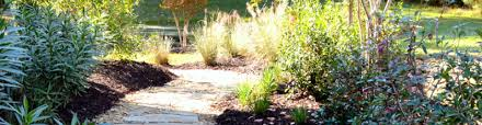 Landscaping Summerville Sc by Matthew Ward Landscapes Home