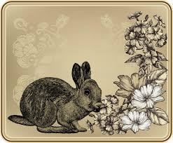 vintage rabbit vintage frame with rabbit blooming roses and phlo stock vector