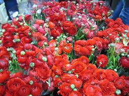 nyc flower delivery new york flower delivery enter your page name