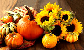 fall pictures with pumpkins for desktop images of cute fall pumpkins wallpaper sc