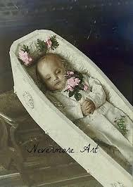 baby casket baby casket post mortem cabinet card reprint child