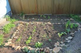 diy project our very own vegetable garden u2013 the italian fork