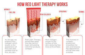 collagen red light therapy light therapy biosonic beauty