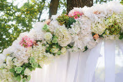 Wedding Trellis Flowers Element Wedding Arch White Flowers Stock Illustration Image