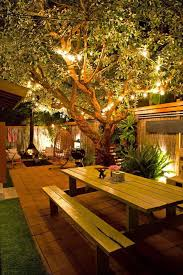 How To Decorate Outdoor Trees With Lights - best 25 lights in trees ideas on pinterest lights in garden