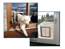 pet doors for sliding glass door 73 best dog doors our products images on pinterest pet door