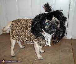 Dog Halloween Costume Ideas 94 Halloweencostumes Animals Images Animals