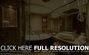 fancy bathrooms realie org
