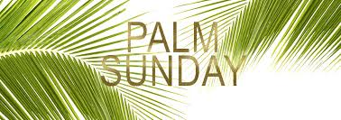 palm branches for palm sunday palm sunday and holy week events unity of palm harbor fl