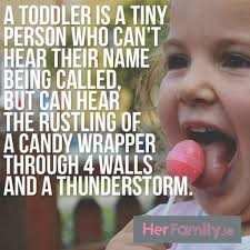 Toddler Meme - this works for dogs too they can be barking up a storm at the back