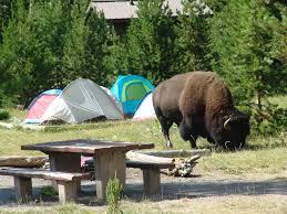 Yellowstone Lodging Map Madison Campground