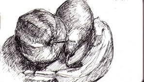 still life drawing of a banana and an apple one drawing daily