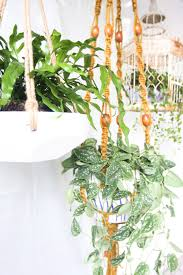 5 creative and easy ways of decorating your home with plants