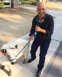 so i was out walking my mini cow when howie mandel stopped for a