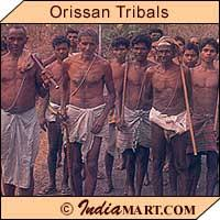 tribes in orissa local tribes in orissa traditional tribes in orissa