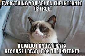Everything On The Internet Is True Meme - the internet is true quickmeme