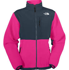 the north north face womens jackets outlet store reasonable sale