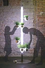 best light for plants ideas best light bulb for plants or good lights for growing plants