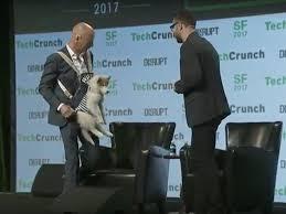 The Ex Sebastian Thrun Wears Dog On Chest At Techcrunch Disrupt