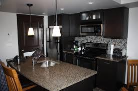 Modern Condo Kitchen Design Attractive Modern Kitchen For Small Condo Pertaining To Home