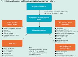 heart failure 1 pathogenesis presentation and diagnosis